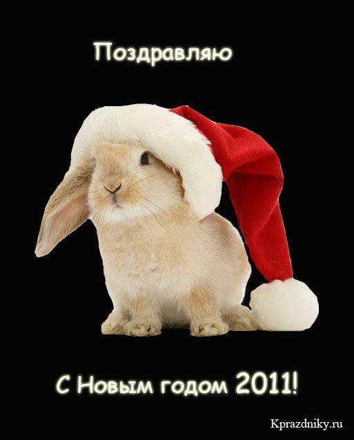 http://kprazdniky.ru/uploads/posts/2010-09/1284799129_pozdravlenija-s-novym-godom-krolika.jpg