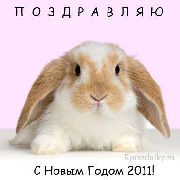 С Новым годом 2011