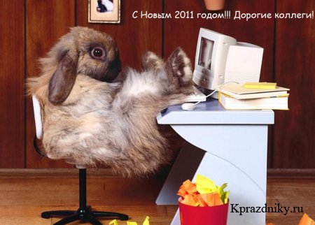 http://kprazdniky.ru/uploads/posts/2010-09/thumbs/1284798995_kollegam-krolik.jpg