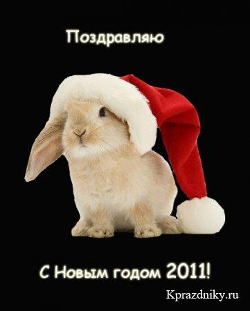 С Новым годом! - Страница 2 1284799129_pozdravlenija-s-novym-godom-krolika