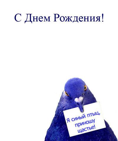 Код для вставки открытки в блог html